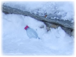 Litter in the snow